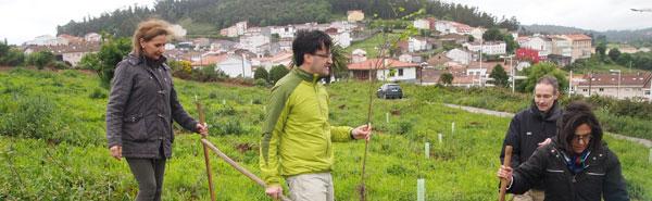 O valedor, nunha recente plantación de árbores en Santiago